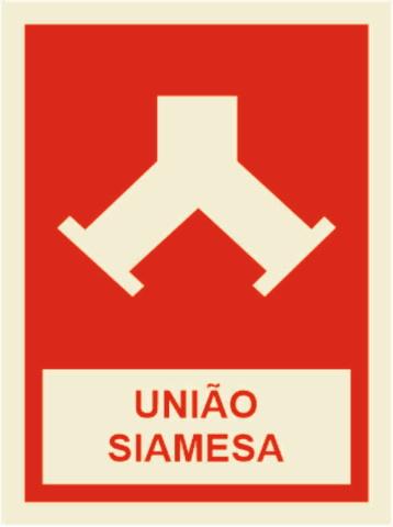 UNIAO SIAMESA 150x150